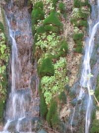 Zion sm waterfall 10-13