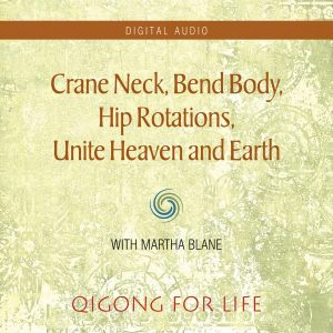 Crane Neck Bend Body - Audio